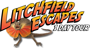 Litchfield Escapes